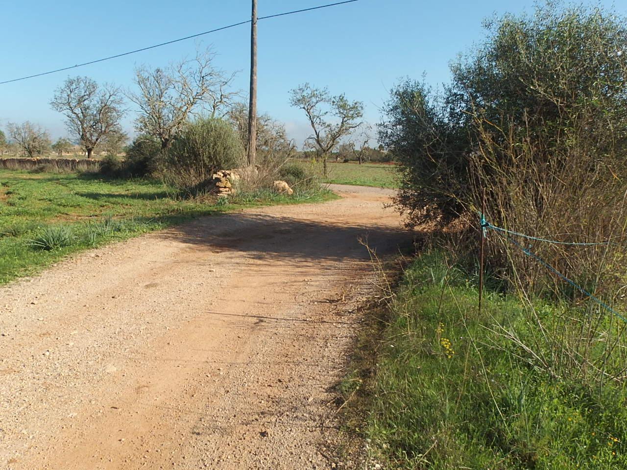 I-5018-1 Parcela a 5 km de la playa de Es Trenc