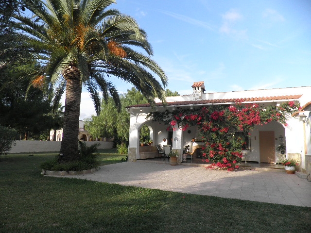 IA-401 Finca with garden in Ses Covetes 2 km from Es Trenc