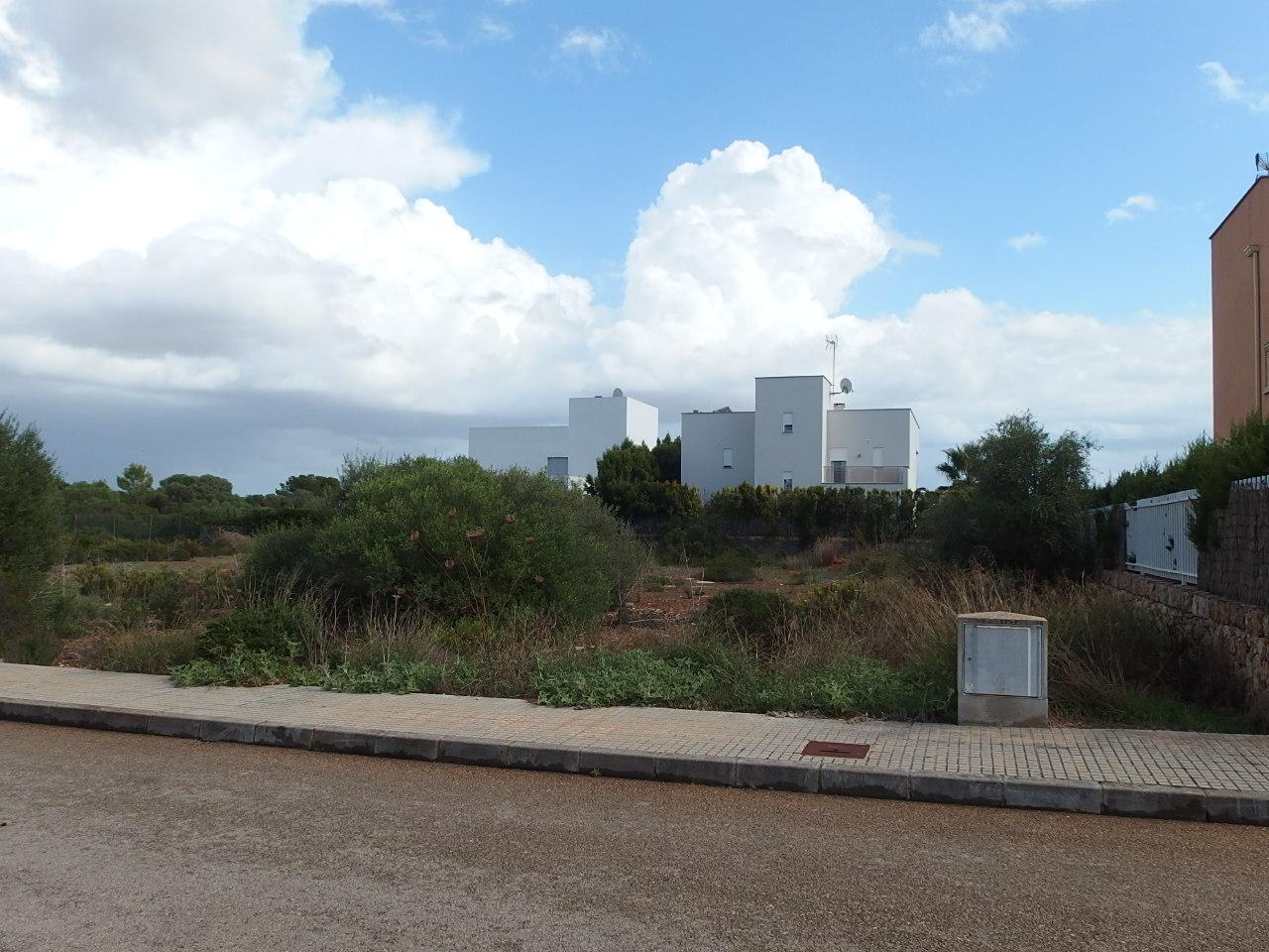 I-4032 Large plot in Can Estela